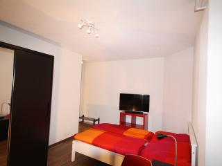 ZH Cranberry - Oerlikon HITrental Apartment Zurich - Opfikon vacation rentals
