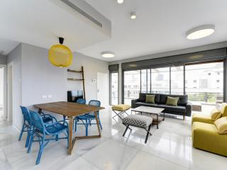 Sheinkin street - Amazing Penthous with 4bdms - Tel Aviv vacation rentals
