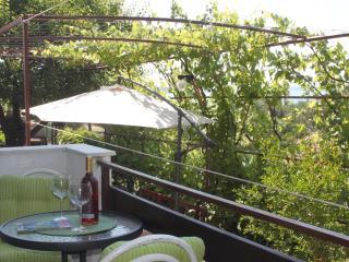 TH01205 Apartments Tim/One Bedroom Apartment A2 - Sveti Petar vacation rentals