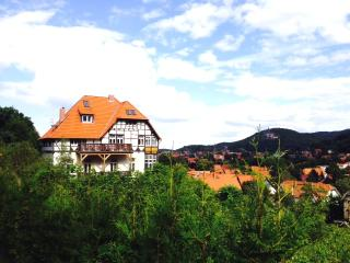 10 bedroom Villa with Central Heating in Wernigerode - Wernigerode vacation rentals