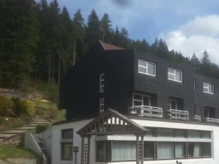 Apartment 3 for 2-6 Guests In Schwarzwald ! - Enzklösterle  vacation rentals