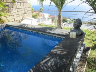 5 bedroom House with Internet Access in Candelaria - Candelaria vacation rentals