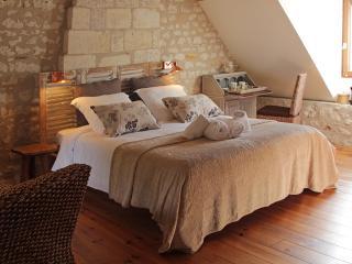 Chambre D'hote aquarelle - la chambre nature - Sainte-Maure-de-Touraine vacation rentals
