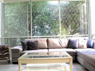 David HaMelah Gorgeous - Tel Aviv vacation rentals