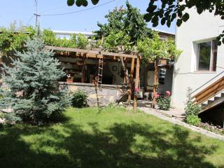 3 bedroom House with Washing Machine in Yeghegnadzor - Yeghegnadzor vacation rentals