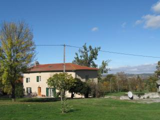Holiday B&B and gite near Pamiers - Pamiers vacation rentals