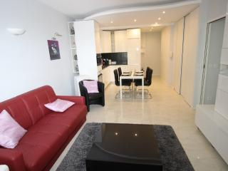 Charming family Flat CHAMPS ELYSEE 1 BR, 2 baths - Paris vacation rentals