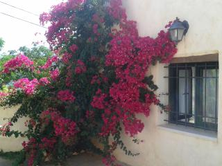Petra & Elia traditional stone villa - Aptera vacation rentals