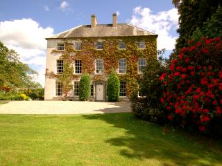 Lovely 6 bedroom Bed and Breakfast in Craigavon - Craigavon vacation rentals