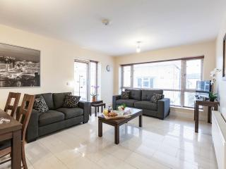 Pearse St. 3 Bed Luxury Suite - Apt 6 - Dublin vacation rentals