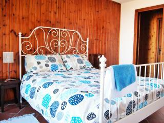Appartamento in Villa sulle colline del Monferrato - Calamandrana vacation rentals