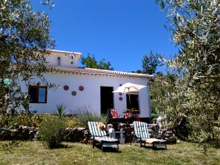 Casa Girasol in own olive grove with plunge pool - Almedinilla vacation rentals