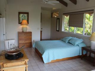 Queen Palm Studio - Kailua-Kona vacation rentals