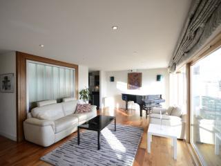 Superb Duplex - Luxury Penthouse - Dublin vacation rentals
