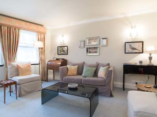 Small elegant flat for 2 people in Wimbledon Village, Sw19 - London vacation rentals