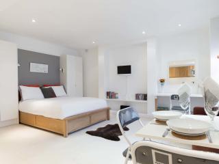 An elegant and fresh studio flat in Primrose Gardens. - London vacation rentals