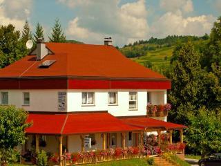 Apartments Plitvice - Villa Hodak - Dreznicko Seliste vacation rentals