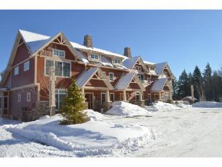Luxury Ski-in, ski-out condo on Mount Snow - Dover vacation rentals