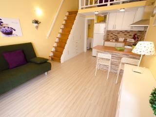 Bright 1 bedroom Melenara Apartment with Internet Access - Melenara vacation rentals