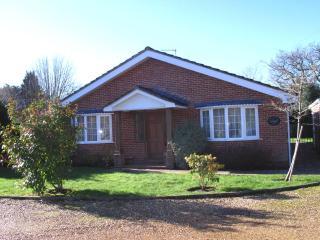 Knightwood Lodge - Brockenhurst vacation rentals