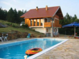 Luxury villa with huge pool and stunning views - Divcibare vacation rentals