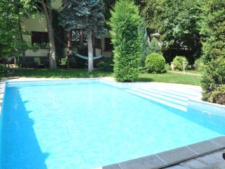 Nice Villa with Internet Access and A/C - Balatonalmadi vacation rentals