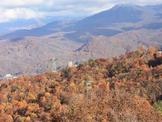 Million $$ Views of Mt. Leconte Gatlinburg - Gatlinburg vacation rentals