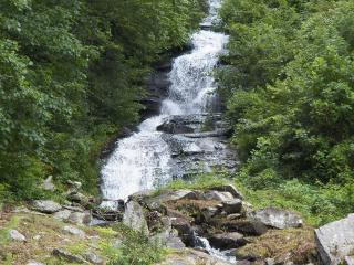 Brightwater Falls Retreat ~ A 7 Acre Private Retreat with 600 foot waterfall! - Hendersonville vacation rentals