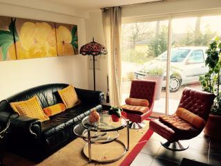 Appartement aux portes de Toulouse - Toulouse vacation rentals