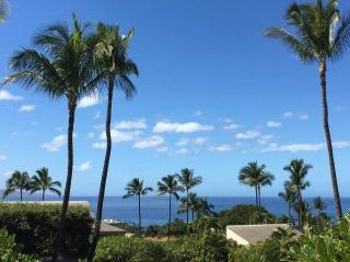 Wailea Ekolu #1406 - Kihei vacation rentals