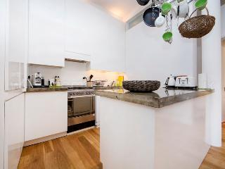Beautifully unique and modern one bedroom apartment in Borough, near London Bridge. - London vacation rentals