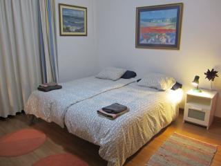 "ROOM  ""HEIDI"" CHALET ANAGATO 2 BEDS 90x200 CM - Tegueste vacation rentals"