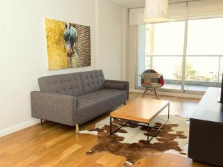 Modern 1 Bedroom Apartment in Stylish Palermo Soho - Buenos Aires vacation rentals