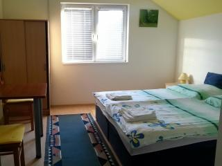 Corry Room for 2 people with AC and a view of the garden near Osijek - Bilje vacation rentals