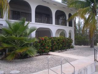 Sparkling canalfront house surrounded by palms - Big Pine Key vacation rentals