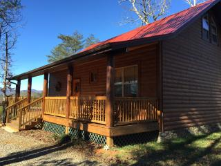 Bearadise Cabin in Franklin, NC  Sleeps 2 - Franklin vacation rentals