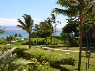 Nice Condo with Internet Access and A/C - Ka'anapali vacation rentals