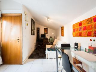 Cozy apartment in la Latina close to the palace - Madrid vacation rentals