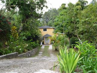 Beautiful 3 bedroom Villa in Irish Town - Irish Town vacation rentals