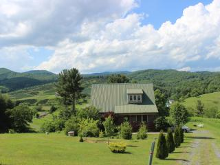 """A LITTLE TLC""-SPA*MTN VIEWS*NEW RIVER*FP*PRIVACY! - Boone vacation rentals"