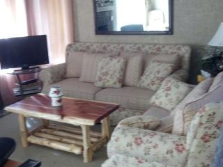 Jack Frost Mountain Ski/golf Vacation Condo - White Haven vacation rentals