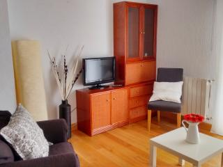 Apartment 8 places 10 minutes beach WI FI - San Sebastian - Donostia vacation rentals