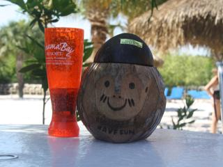 Disney condo, 3 bdrm pool view ground floor - Kissimmee vacation rentals