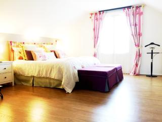 Bedrooms Between Paris and Disneyland - Saint-Thibault-des-Vignes vacation rentals