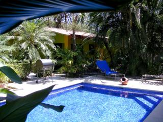 Charming Studio with Internet Access and A/C - Playa Potrero vacation rentals
