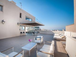Incredible Penthouse in Tel Aviv - Jaffa vacation rentals