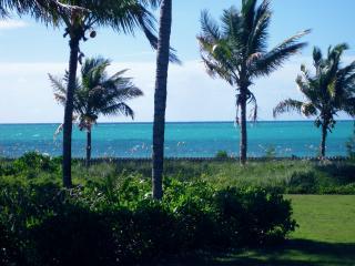The Blue Inn Beach Villa - Freeport vacation rentals
