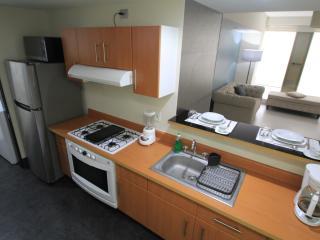 Boutique Apartment Puerta Alameda /801 - Mexico City vacation rentals