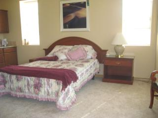 Beautiful Condo with Television and Central Heating - Colorado Springs vacation rentals