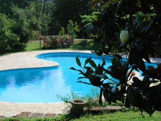 Luxury lakefront villa near Rome, private pool - Rome vacation rentals